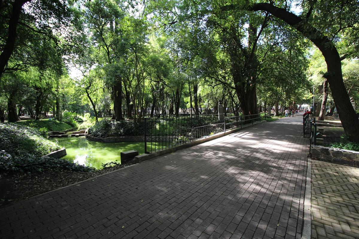 Circuito Gandhi : 1ra sección del bosque de chapultepec en donde correr